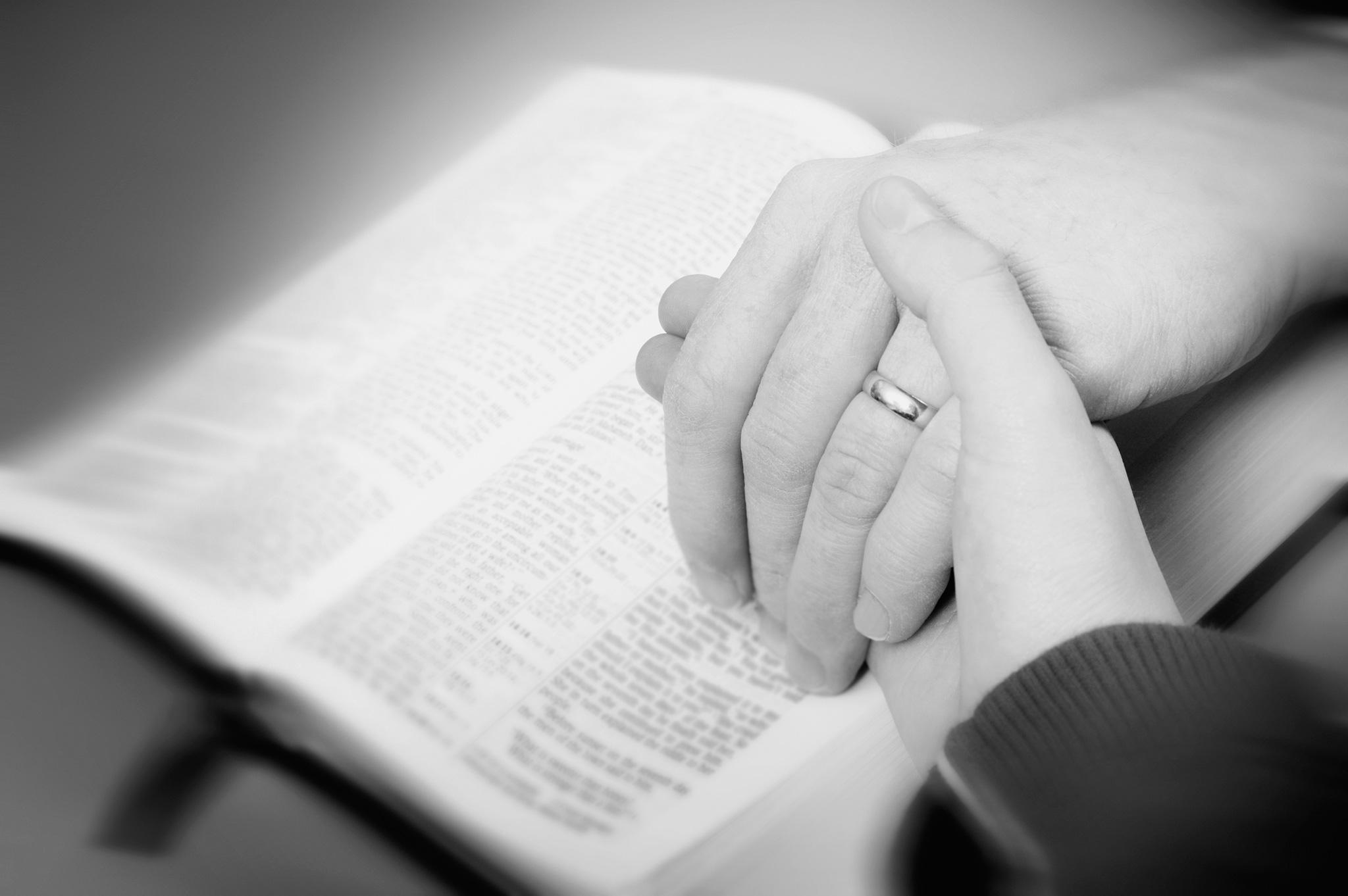 El Matrimonio La Biblia : Bendiciones bíblicas para los esposos bible