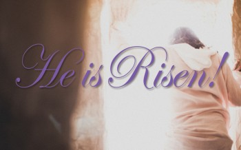 Have you read the Easter story yet? Now's your chance.