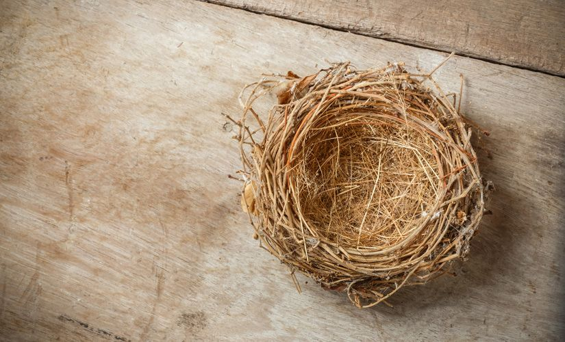 Dealing with an Empty Nest? 5 Verses to Ease the Loneliness