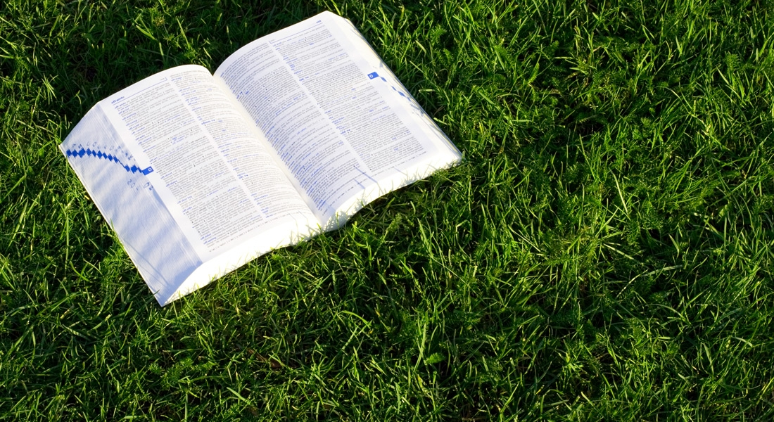 What Does the Bible Say About Earth Day?